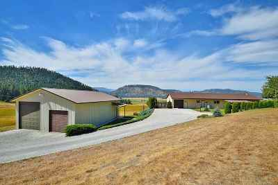 Spokane County, Stevens County Single Family Home For Sale: 2801 B 395 S Hwy