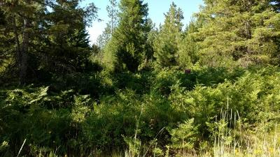 Residential Lots & Land For Sale: Forest Haven