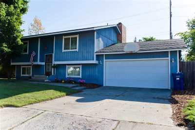 Spokane Valley Single Family Home For Sale: 1521 S Century St