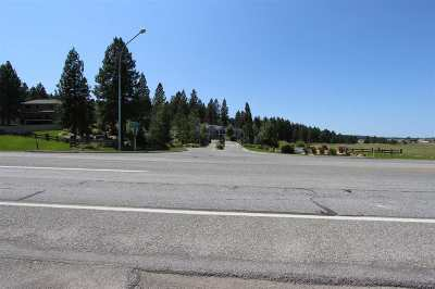 Spokane Valley Residential Lots & Land For Sale: 13109 E Copper River Ln