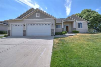 Cheney Single Family Home Ctg-Inspection: 9723 W January Dr