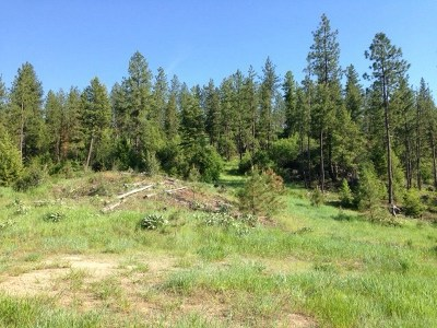 Tumtum Residential Lots & Land For Sale: T Corkscrew Canyon