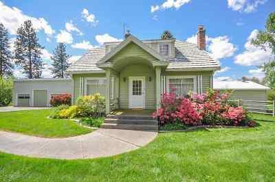 Spokane County, Stevens County Single Family Home For Sale: 410 W 3rd St