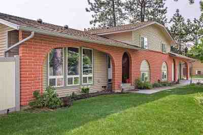 Nine Mile Falls Single Family Home For Sale: 12413 W Sunridge Dr