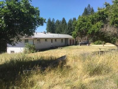 Spokane County, Stevens County Single Family Home For Sale: 37010 N Rabe Rd