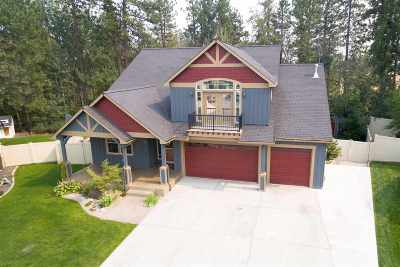Medical Lk Single Family Home New: 841 S Cindy Jo Ct