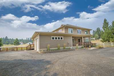 Spokane County, Stevens County Single Family Home For Sale: 1510 S Garry Rd