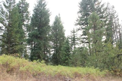 Residential Lots & Land For Sale: State