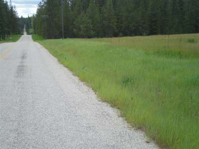 Valley Residential Lots & Land For Sale: W Jump Off Joe