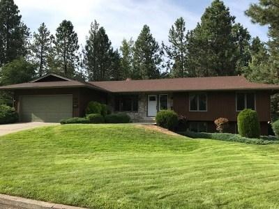 Spokane Single Family Home New: 1821 E 24th Ave