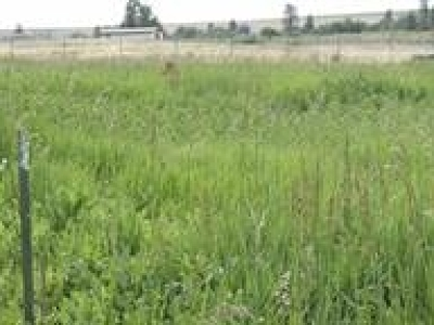 Residential Lots & Land For Sale: Oak
