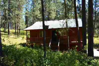 Spokane County, Stevens County Single Family Home For Sale: 2699 C Rathbun Way