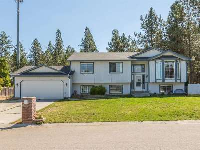 Mead Single Family Home New: 15810 N Anna Ct