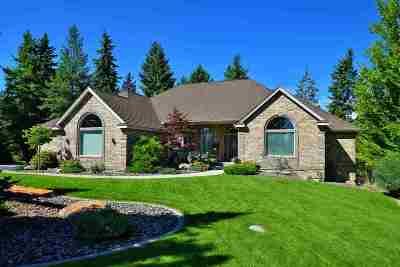 Spokane County, Stevens County Single Family Home For Sale: 17007 N Logan Ln