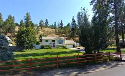 Nine Mile Falls Single Family Home For Sale: 125 E Wynot Dr