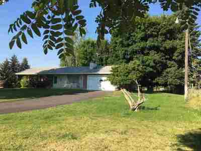 Spokane County, Stevens County Single Family Home For Sale: 27019 N Sherman Rd