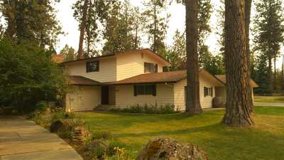 Spokane County, Stevens County Single Family Home Ctg-Inspection: 14212 S Shoreview Dr