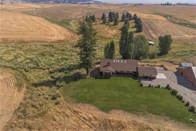 Spokane County, Stevens County Single Family Home For Sale: 15611 S Madison Rd