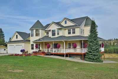 Spokane County, Stevens County Single Family Home For Sale: 21902 N Monroe Rd