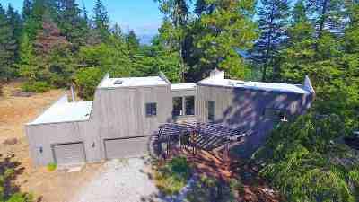Spokane Single Family Home For Sale: 5225 S Park Ln