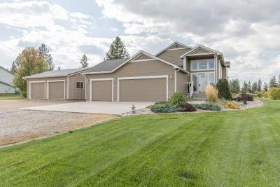 Nine Mile Falls WA Single Family Home Chg Price: $299,950