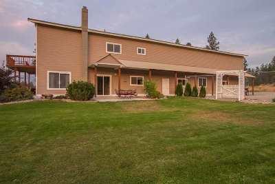Spokane County, Stevens County Single Family Home New: 1796 Hutchinson Rd
