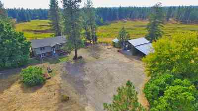 Spokane Single Family Home For Sale: 21313 W Four Mound Rd