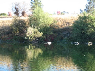 Spokane Valley Residential Lots & Land For Sale: E Coyote Rock