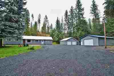 Mead Single Family Home New: 21212 N Mount Spokane Park Dr