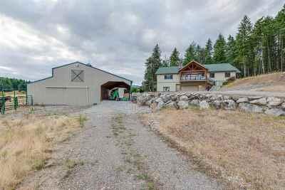 Spokane County, Stevens County Single Family Home For Sale: 42801 N Boundary Rd