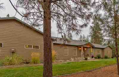 Spokane, Spokane Valley Single Family Home For Sale: 6208 W Rutter Pkwy