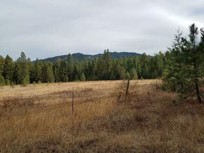 Kettle Falls Residential Lots & Land Ctg-Other: Sand Creek Lot 2