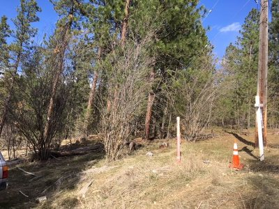 Spokane Residential Lots & Land For Sale: E Wabash Ave