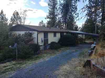 Spokane Single Family Home For Sale: 15317 N Ritchey Rd