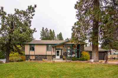 Spokane County, Stevens County Single Family Home For Sale: 4617 S Woodruff Rd