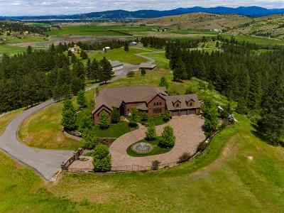 Spokane County Single Family Home For Sale: 21218 E Saltese Lake Rd