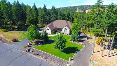 Spokane Single Family Home For Sale: 17007 N Logan Ln