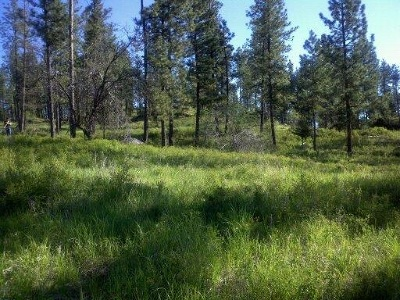 Addy Residential Lots & Land For Sale: Hutchison