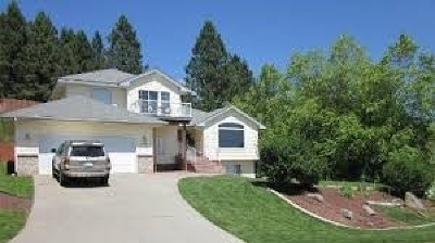 Otis Orchards WA Single Family Home For Sale: $317,500