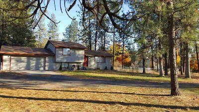 Spokane County, Stevens County Single Family Home For Sale: 12924 W Sunnyvale Dr