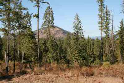Residential Lots & Land For Sale: S Waitts Lake Rd #Lot D