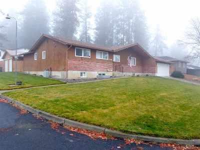 Spokane Single Family Home For Sale: 11301 N Post St