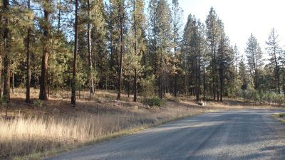 Kettle Falls Residential Lots & Land For Sale: Lot 14 Bk 2 Fumi Cir