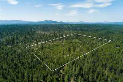 Residential Lots & Land For Sale: Pine