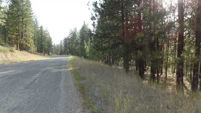 Kettle Falls Residential Lots & Land For Sale: Lot 14 Bk 1 Fumi Cir