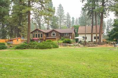 Spokane County, Stevens County Single Family Home For Sale: 214 S Russell Rd