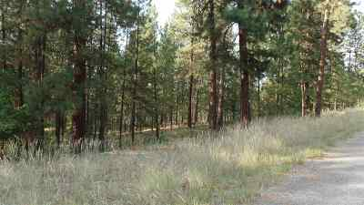 Kettle Falls Residential Lots & Land For Sale: Lot 13 Bk 1 Fumi Cir