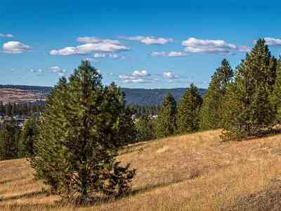 Nine Mile Falls Residential Lots & Land For Sale: Westview