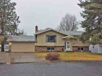 Spokane Single Family Home New: 7203 N Lidgerwood Ct