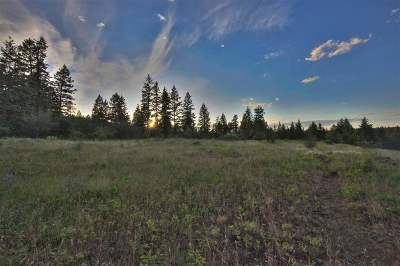 Spokane Residential Lots & Land For Sale: Four Mound